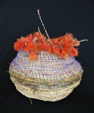 Basket with Beautifortia sqarrosa, side view. 2016