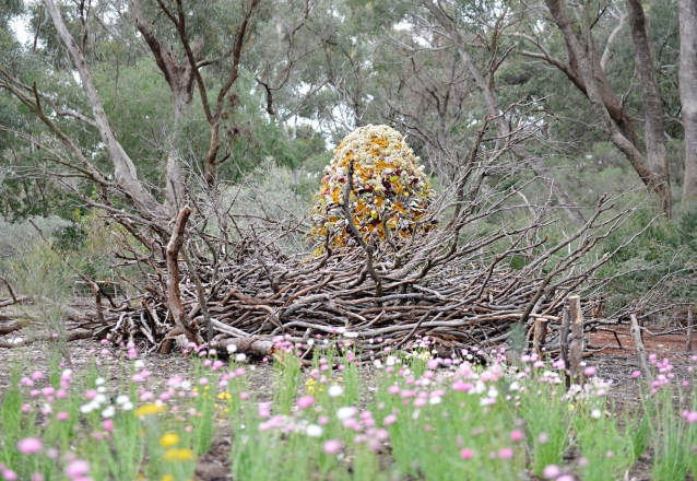 Artsource for Kings Park Festival 2017, Where the Wildflowers Are. Sally Stoneman, Woven Wildernest, 2017. Karen Millar and Pascal Proteau, From Pollination to Inspiration, 2017. Photographer: Sue-Lyn Moyle